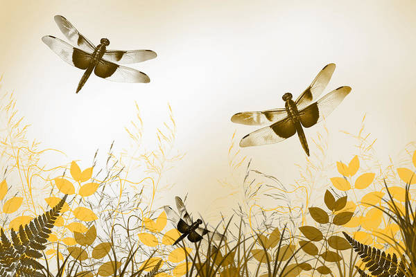 Mixed Media - Gold Dragonfly Art by Christina Rollo