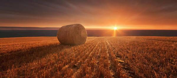 Hay Bale Wall Art - Photograph - Gold Harvest by Marcin Krakowski