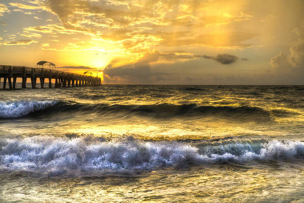 Lake Worth Wall Art - Photograph - Gold Rush by Debra and Dave Vanderlaan