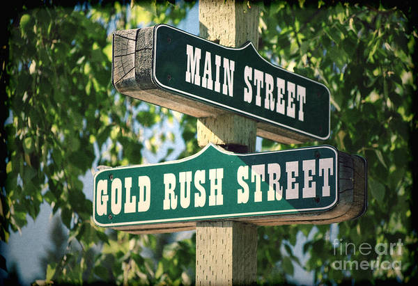 Photograph - Gold Rush Street Sign by Les Palenik