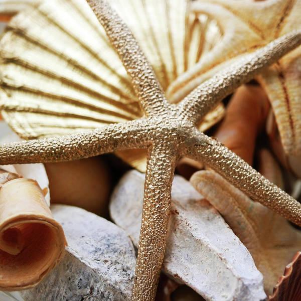 Coastal Digital Art - Gold Starfish II by Susan Bryant