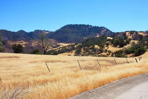 Figueroa Mountain Photograph - Golden California by Art Block Collections