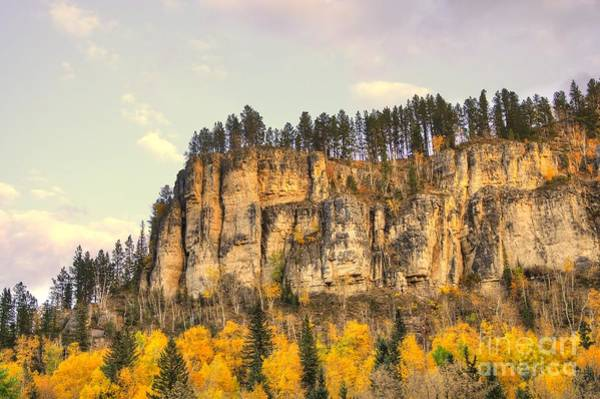 Photograph - Golden Cliffs by Anthony Wilkening
