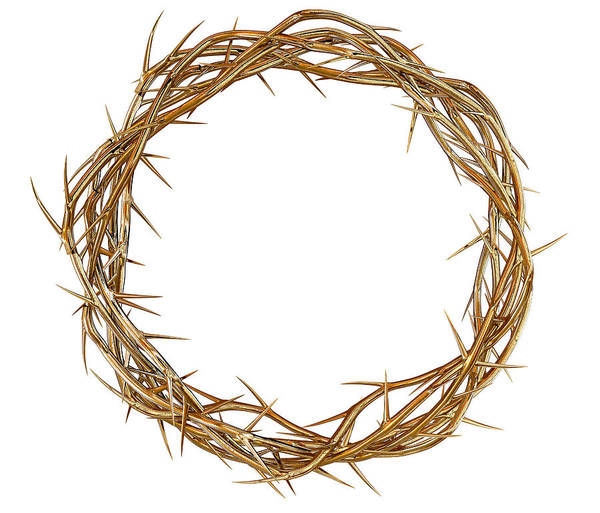 Crucifixion Digital Art - Golden Crown Of Thorns by Allan Swart