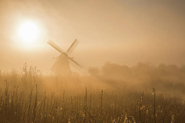 Mills Photograph - Golden Dawn. by Ton Drijfhamer