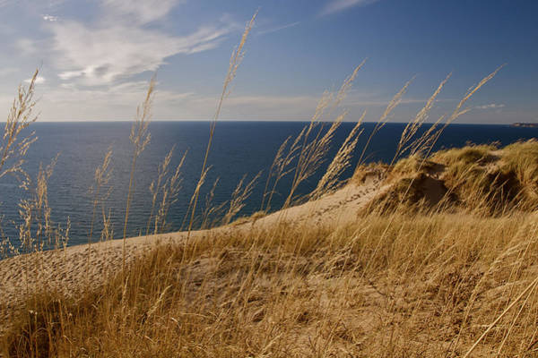 Photograph - Golden Dune Grass On The Lake by Owen Weber
