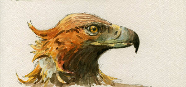 Nocturnal Wall Art - Painting - Golden Eagle by Juan  Bosco