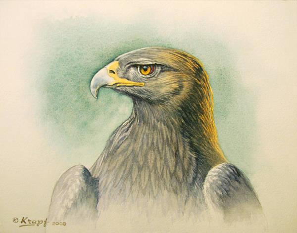 Wall Art - Painting - Golden Eagle Portrait by Paul Krapf