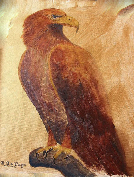 Painting - Golden Eagle by Richard Le Page