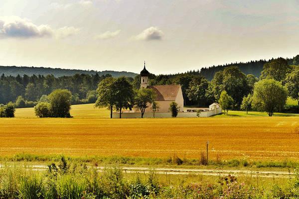 Photograph - Golden Farm by John Johnson