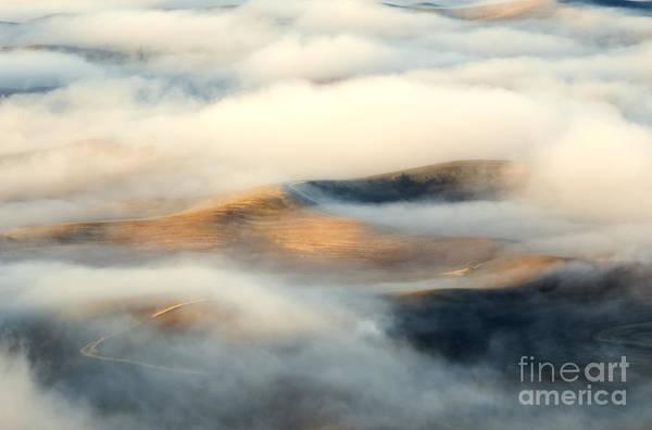 Palouse Photograph - Golden Fleece by Mike Dawson