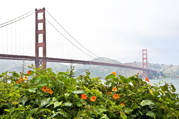 Photograph - Golden Gate Bridge 2 by Shane Kelly