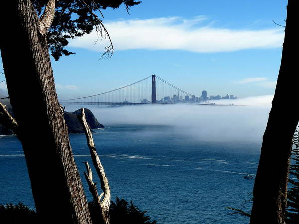 Photograph - Golden Gate Bridge And Fog  by Jeff Lowe