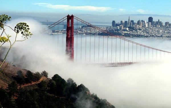 Photograph - Golden Gate Bridge In Fog And San Francisco by Jeff Lowe