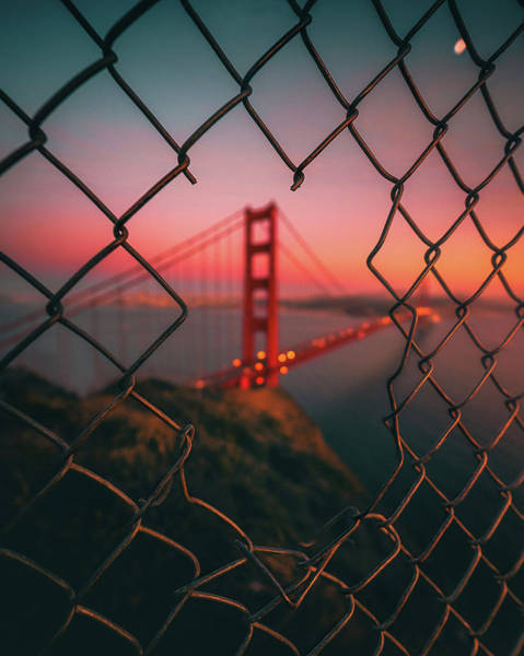 Wall Art - Photograph - Golden Gate Caged by David George