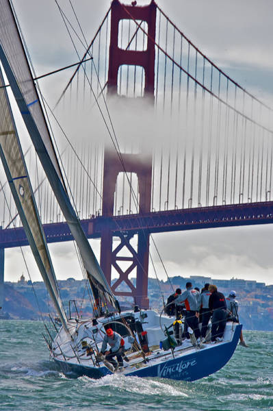 Photograph - Golden Gate Sailing by Steven Lapkin
