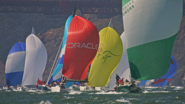 Photograph - Golden Gate Spinnakers by Steven Lapkin