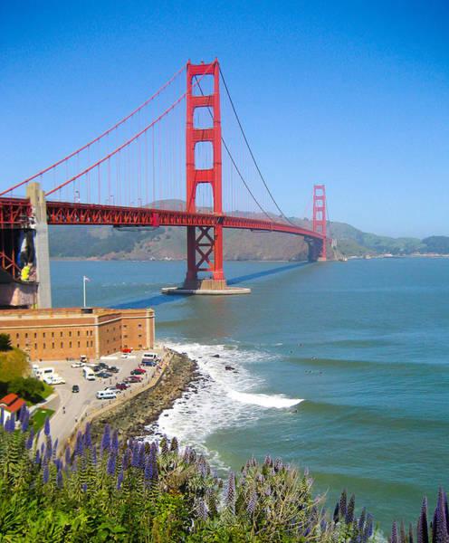 Golden Gate Wildflowers Art Print