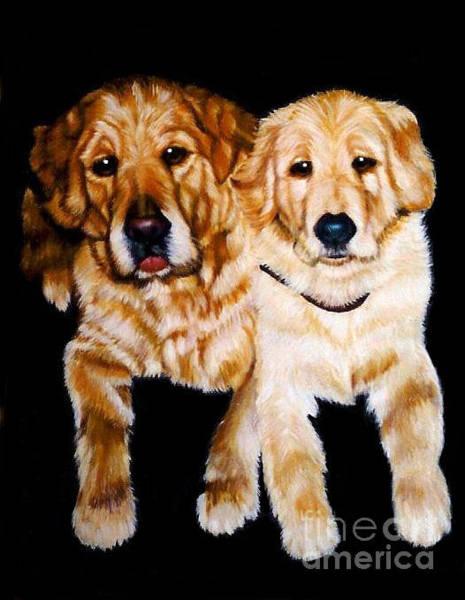 Golden Retriever Mixed Media - Golden Girls Dog Portrait by CA  Teresa