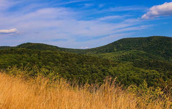 Photograph - Golden Grass In The Blue Ridge by Rachel Cohen