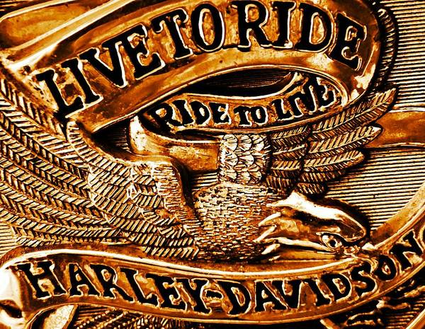 Two Birds Photograph - Golden Harley Davidson Logo by Chris Berry