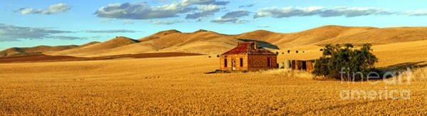Wall Art - Photograph - Golden Harvest Panorama by Bill  Robinson