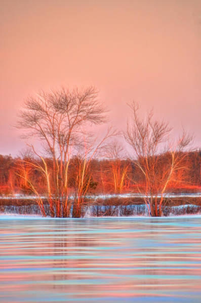 Photograph - Golden Hour Frozen Reflection by Beth Sawickie
