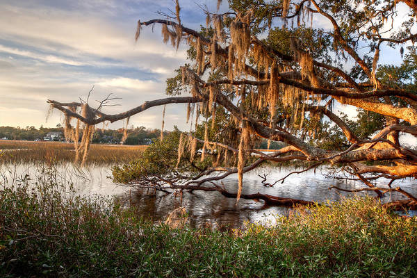 Pleasant Photograph - Golden Hour On The Creek by Walt  Baker