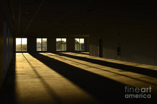 Photograph - Golden Hour Through The Windows Of An Empty Floor by Carlos Alkmin