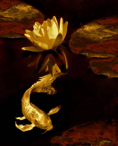 Koi Pond Photograph - Golden Koi Fish And Water Lily Flower by Jennie Marie Schell