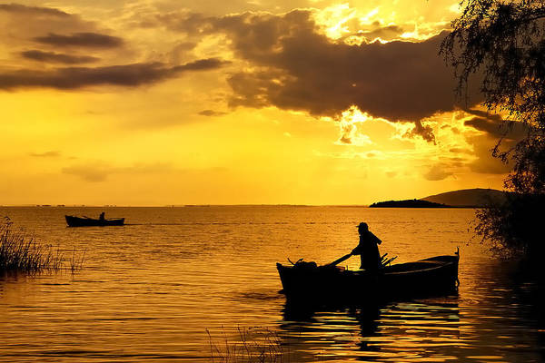 Photograph - Golden Lake - 3 by Okan YILMAZ