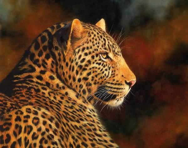 Big Cat Wall Art - Painting - Golden Leopard by David Stribbling