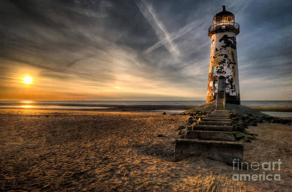 Wall Art - Photograph - Golden Light by Adrian Evans