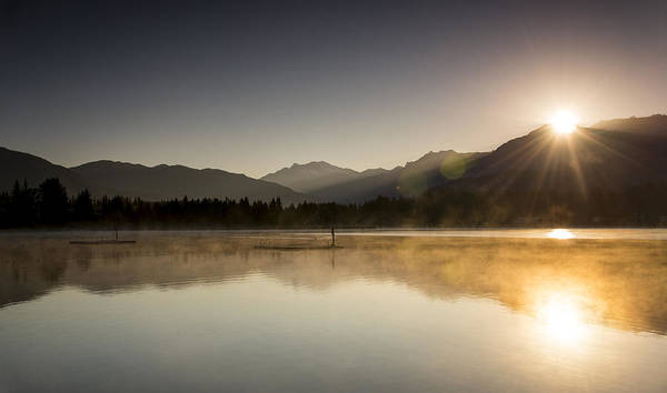 Duck Hunt Photograph - Golden Morning by Aaron Bedell
