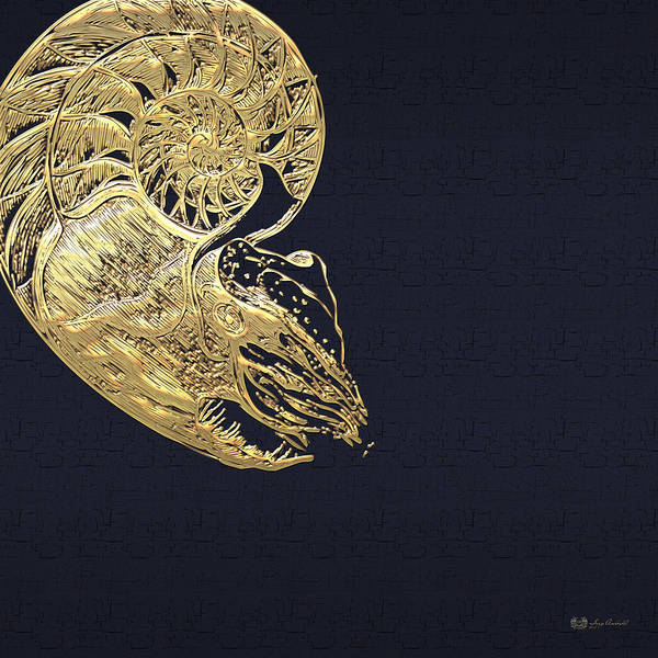 Digital Art - Golden Nautilus On Charcoal Black by Serge Averbukh