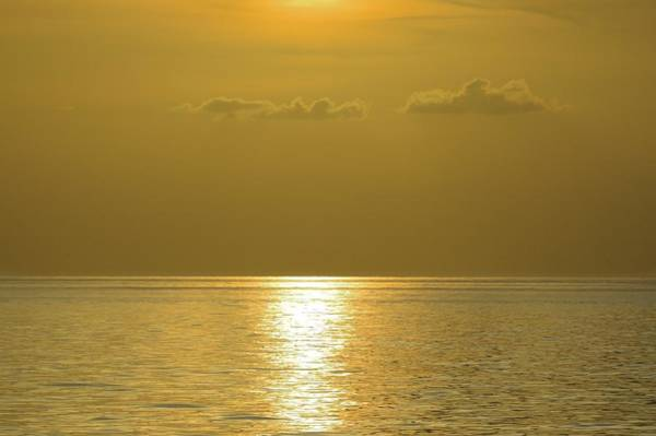 Photograph - Golden Ocean by Bradford Martin