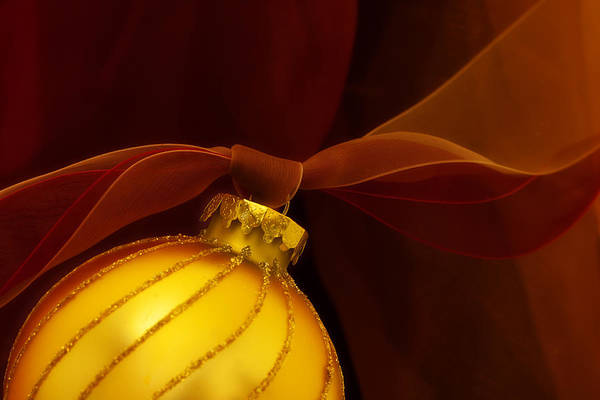 Ornaments Wall Art - Photograph - Golden Ornament With Red Ribbons by Carol Leigh