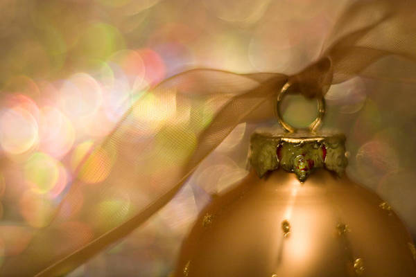 Ornaments Wall Art - Photograph - Golden Ornament With Ribbon by Carol Leigh