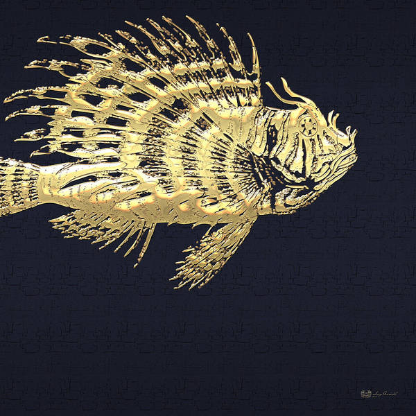 Digital Art - Golden Parrot Fish On Charcoal Black by Serge Averbukh