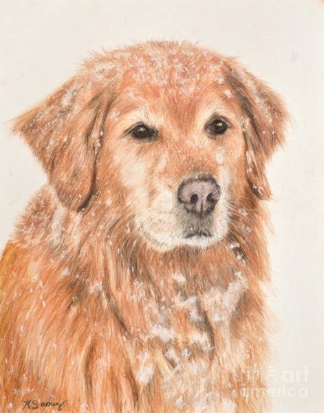 Art Print featuring the painting Golden Retriever In Snow by Kate Sumners