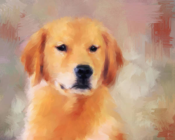 Painting - Golden Retriever by Jai Johnson