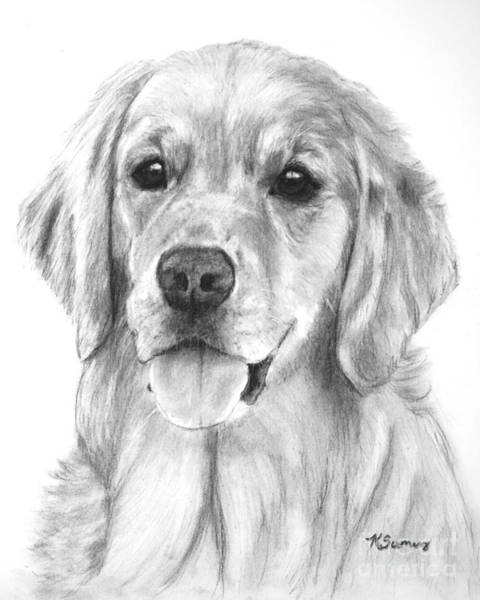 Art Print featuring the drawing Golden Retriever Jessie Adult by Kate Sumners