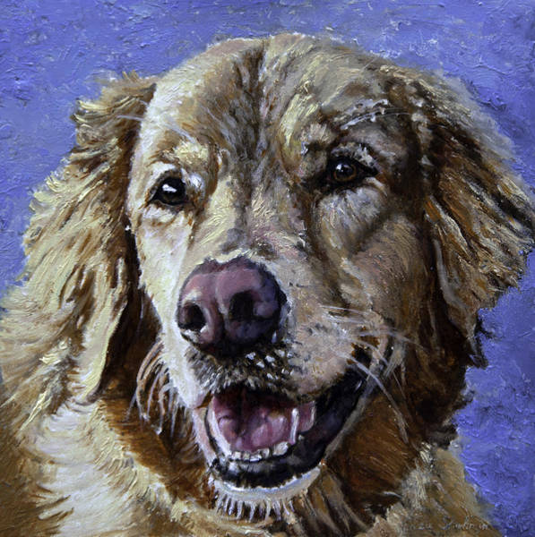 Wall Art - Painting - Golden Retriever - Molly by Portraits By NC