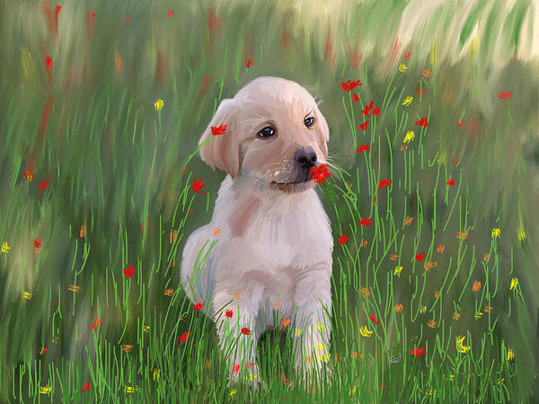 Finger Paint Painting - Golden Retriever Puppy  by Angela Stanton