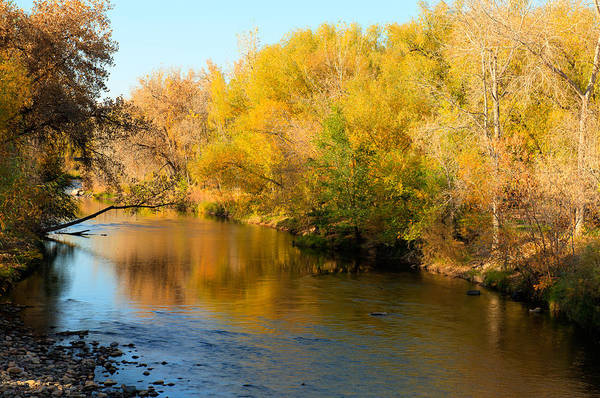 Photograph - Golden River by Jennifer Grossnickle
