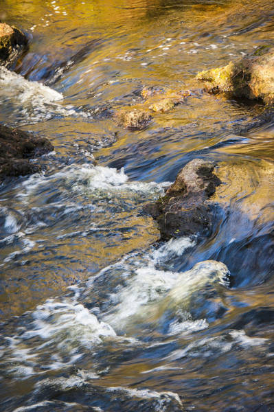 Photograph - Golden River Rapids by Carolyn Marshall