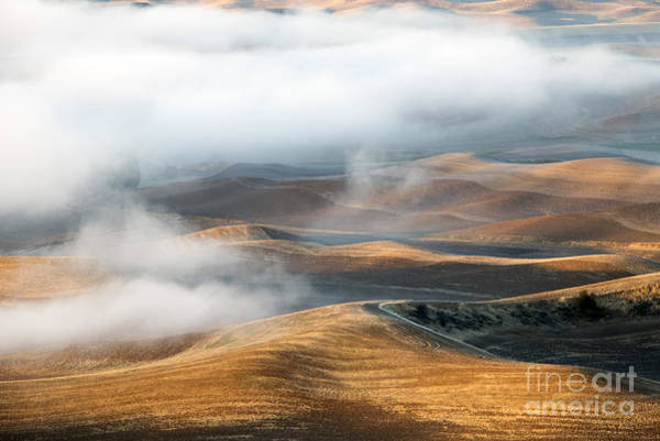 Palouse Photograph - Golden Shadows by Mike  Dawson