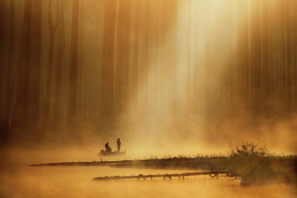 Wall Art - Photograph - Golden Silence by Takashi Suzuki