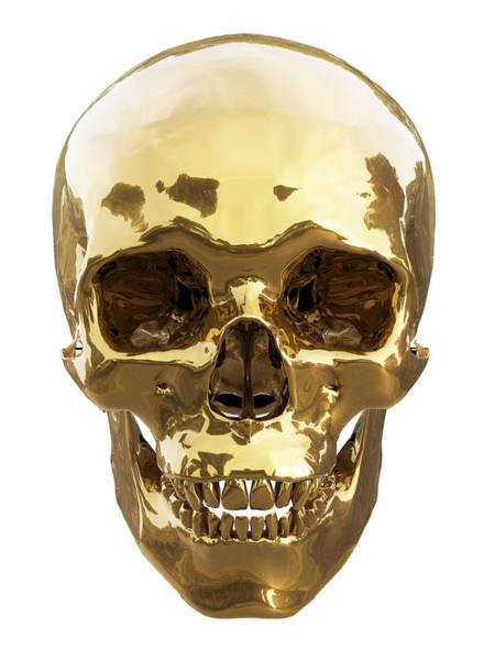 Dead Head Digital Art - Golden Skull by Vitaliy Gladkiy