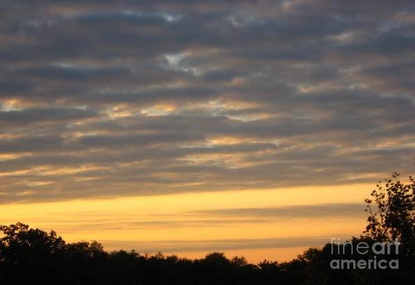 Wall Art - Photograph - Golden Sky by Anne Marie Corbett
